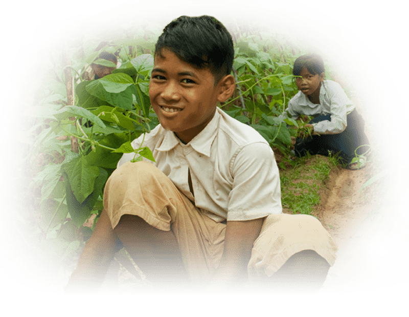 Education Programme - Life Skills